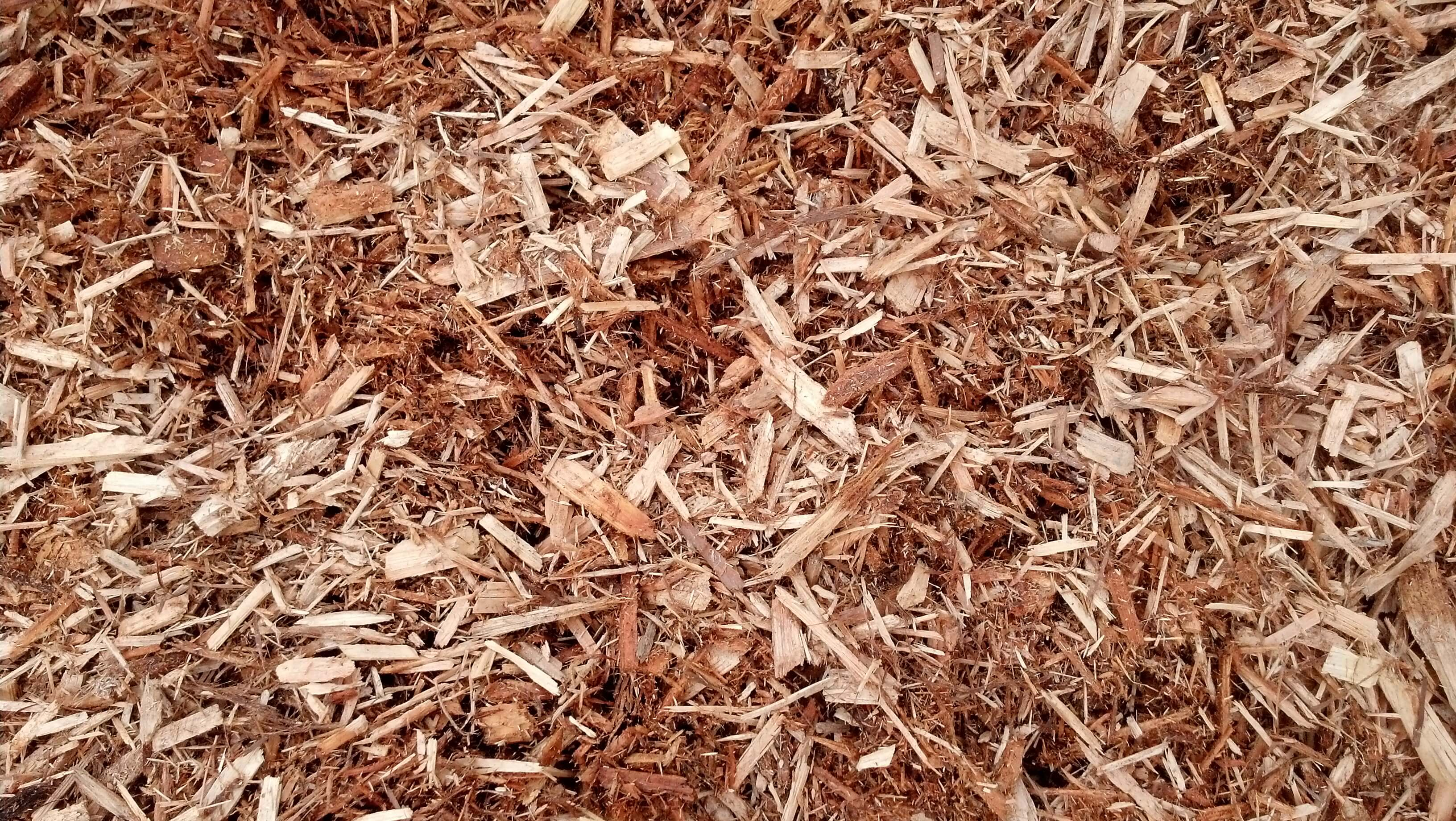 how to cook wood chips